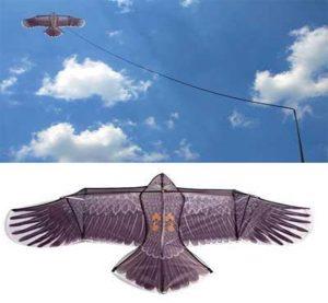 Épouvantail volant rapace - AIC International
