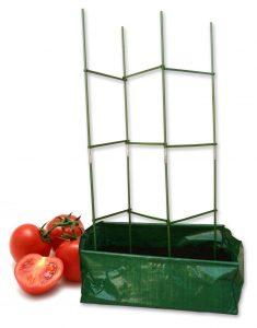 Kit à planter tomates - AIC International