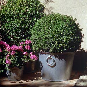 Galvanized flower pot n°4 – 59L - AIC International