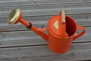 Arrosoir 5L Milane – Orange