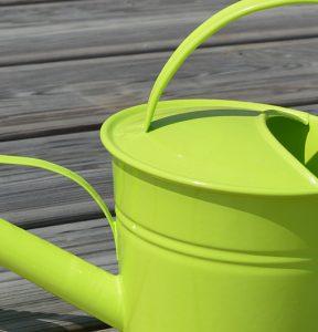 Arrosoir 1.5L Léane – Vert