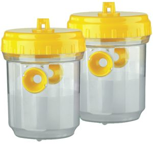 Set of 2 trap with wasps - AIC International
