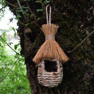 Birdhouses Myco