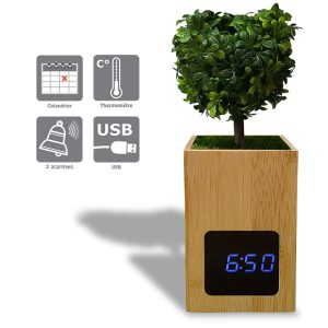 "LED bamboo alarm clock with plant ""Arti"" - AIC International"