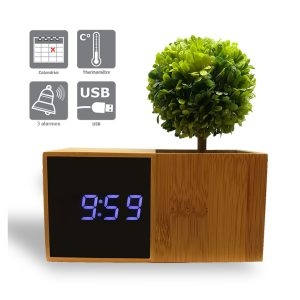 LED bamboo alarm clock with plant - AIC International