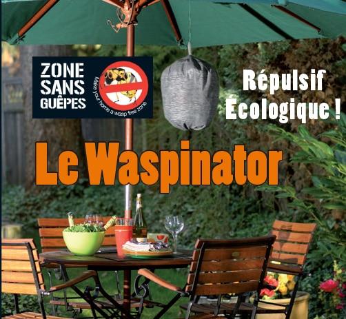Le Waspinator : Répulsif à guêpes écologique !