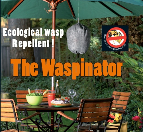 Ecological wasp Repellent: the Waspinator!